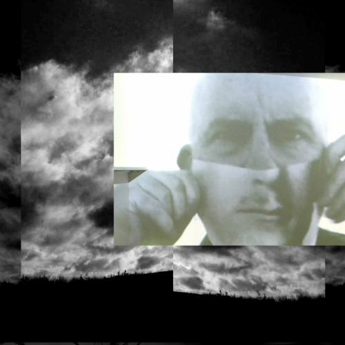 Still image from Contrapunctus video