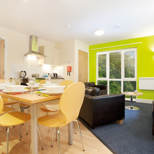 Accommodation interior, sofas, dining table and chairs, bright green wall.
