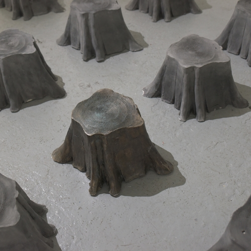 A formation of smoothly cut tree stumps.