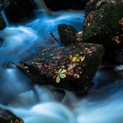 Long exposure of stream running around rocks with leaves on.