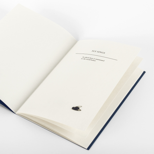 Inside of book cover