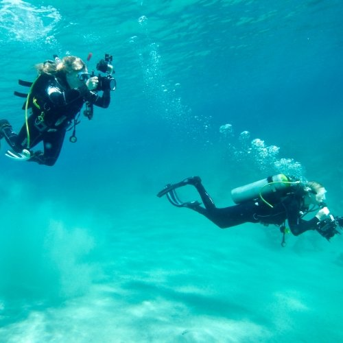 Students in diving gear with cameras in turquoise waters.