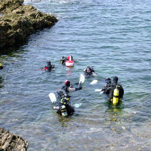 Group of students in diving gear on the surface of the water.
