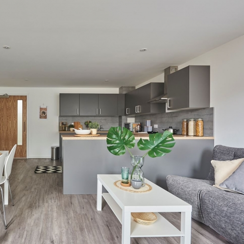 Open plan kitchen/dining room with dining table, sofa, plant and kitchen cupboards