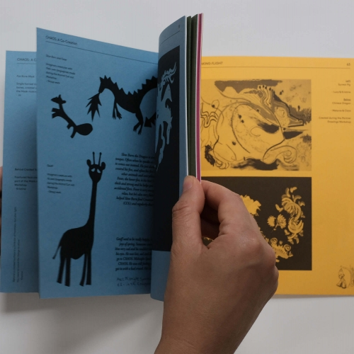 Chaos: A Co-Creation - flicking through pages of book